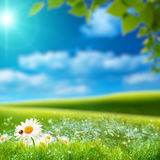 Paysage naturel rêveur Photographie stock libre de droits