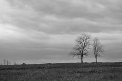 Paysage noir et blanc Photo stock