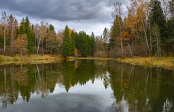 Paysage nuageux d'automne avec l'étang et les arbres de forêt images libres de droits