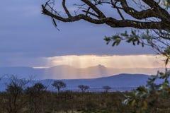 Paysage nuageux de coucher du soleil en parc national de Kruger, Afrique du Sud images stock