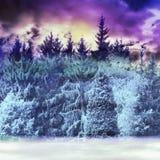 Paysage panoramique neigeux de forêt d'hiver avec les conifères congelés et le ciel dramatique illustration de vecteur
