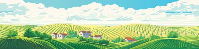 Paysage panoramique rural illustration de vecteur