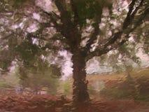 Paysage par une fenêtre de voiture sous la forte pluie Images libres de droits