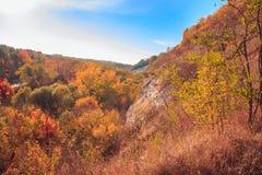 Paysage pittoresque d'automne avec forrest coloré photographie stock libre de droits