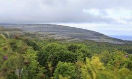 Paysage pittoresque en parc national de Connemara Image libre de droits