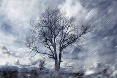 Paysage pluvieux d'automne images libres de droits
