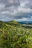 Paysage portoricain avec des maisons parmi les arbres Photographie stock