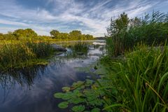 Paysage près de la rivière de Myhiia l'ukraine Photographie stock libre de droits