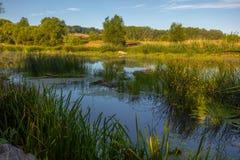 Paysage près de la rivière de Myhiia l'ukraine Photos libres de droits