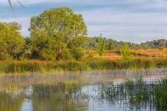 Paysage près de la rivière de Myhiia l'ukraine Images libres de droits