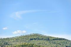 Paysage près de Montemassi Images stock