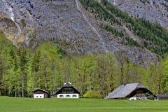 Paysage reculé vivant de flanc de montagne photo libre de droits