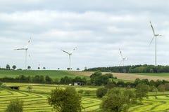 Paysage renouvelable d'été de source d'énergie de turbine de vent avec l'espace libre Images stock