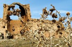 Paysage rocailleux et ruines d'Ani antique Photo libre de droits