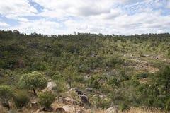 Paysage rocheux de John Forrest National Park Photographie stock libre de droits