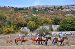 Paysage rocheux de montagne avec les arbres de vert d'automne, jaunes et rouges Photo libre de droits