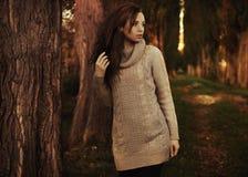 Paysage romantique d'automne images libres de droits