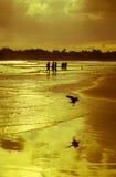 Paysage romantique de plage de Weligama avec le coucher du soleil étonnant Image libre de droits