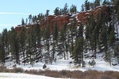 Paysage rouge d'hiver de roche du Colorado Images libres de droits