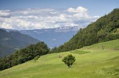 Paysage rural Photos libres de droits