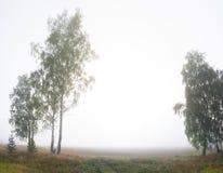 Paysage rural avec le champ, la forêt et le brouillard images stock