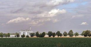 Paysage rural avec un champ et un ascenseur pour le séchage et le stockage du grain images stock