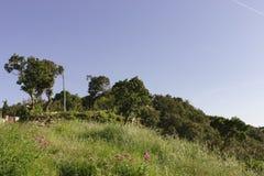 Paysage rural Begur images stock