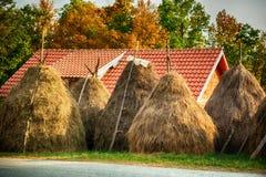 Paysage rural d'été avec des meules de foin dans le petit village photographie stock