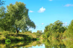 Paysage rural d'été avec la rivière et la forêt photographie stock libre de droits