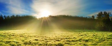 Paysage rural d'été avec le lever de soleil sur un pré, une forêt et un brouillard, image stock