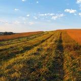 Paysage rural d'automne Photos libres de droits