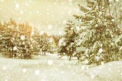 Paysage rural d'hiver avec la forêt et le village photographie stock
