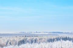 Paysage rural d'hiver avec la forêt et les arbres couverts de neige photos libres de droits