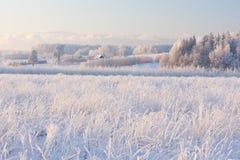 Paysage rural d'hiver avec le gel blanc sur le champ et la forêt images stock