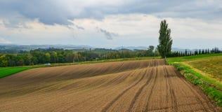 Paysage rural dans Biei, Japon photographie stock libre de droits