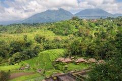 Paysage rural de Bali photographie stock