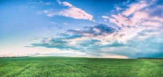 Paysage rural de champ sous le ciel dramatique nuageux bleu de ressort scénique photographie stock libre de droits