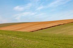 Paysage rural de ferme du Sussex photo stock