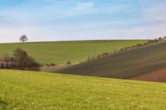 Paysage rural de ferme du Sussex image stock