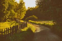 Paysage rural de la Suède images libres de droits