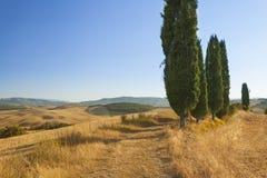 Paysage rural de lever de soleil de la Toscane image libre de droits
