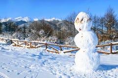 Paysage rural de montagne de neige d'hiver, copyspace photo libre de droits