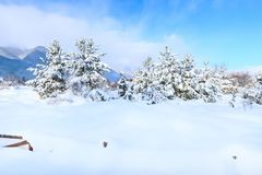 Paysage rural de montagne de neige d'hiver, copyspace photos libres de droits