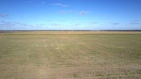 Paysage rural de vue aérienne avec des champs sous le ciel bleu banque de vidéos
