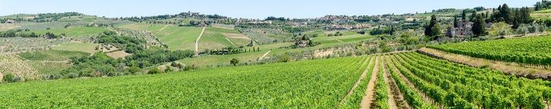 Paysage rural des vignobles de chianti sur la Toscane images stock