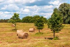 Paysage rural du champ des meules de foin sous le ciel nuageux Images stock