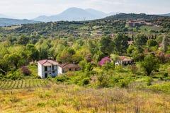 Paysage rural en Grèce avec la ferme et les vignobles images stock