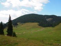 Paysage rural en montagnes d'Apuseni, Roumanie Photo stock