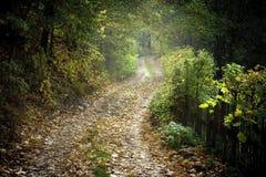 Paysage rural polonais photos libres de droits