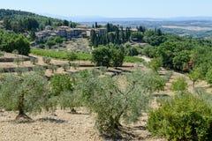 Paysage rural près de Castellina dans le chianti sur la Toscane photos stock